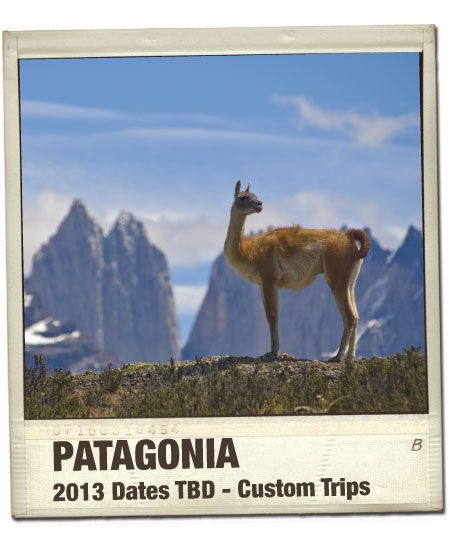 Patagonia LivingWell Travel